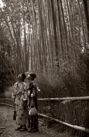 Couple_in_bamboo_BW.Aug.08.jpg