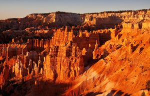 Bryce_Canyon_Dawn_Jun.10.jpg